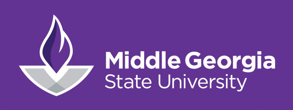 Middle Georgia State University - 50 Best Affordable Bachelor's in Software Engineering