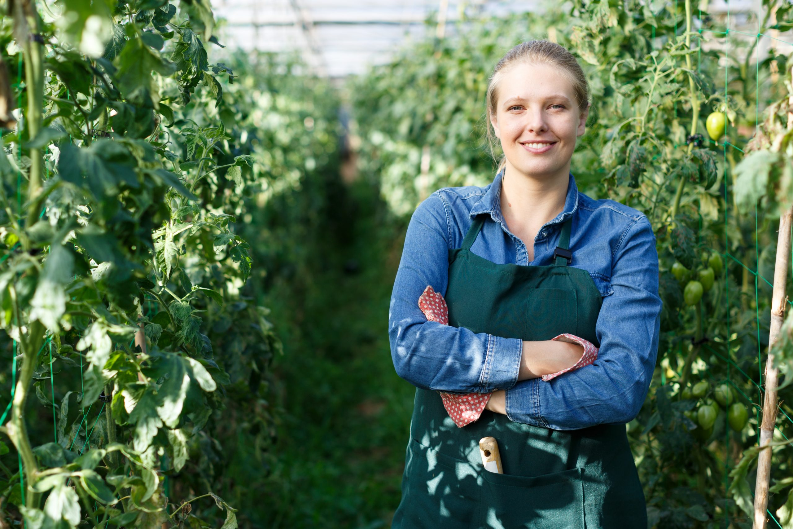 Affordable Schools Do you need a degree to be a horticulturist